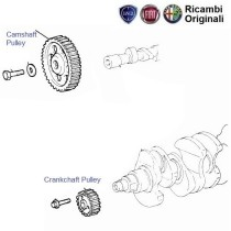 Crankshaft & Camshaft Pulleys| 1.2| Palio