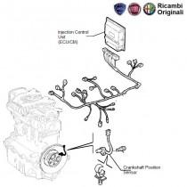 ECU| Fuel Injection Control | Palio| 1.9D