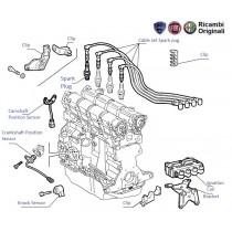 Ignition System| 1.6| Palio| Petra| Adventure| Stile