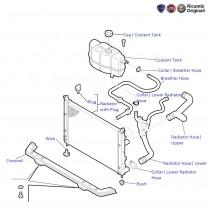 Fiat Palio 1.2: Radiator & Hoses