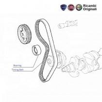 Timing Belt 1.2  Palio  Siena