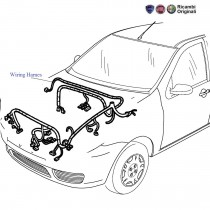 Front Wiring Harness| 1.3 MJD| Palio Stile