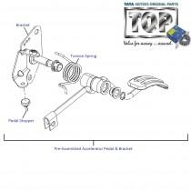 Accelerator Pedal| Nano