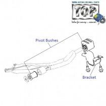 Pivot Bushes  Front Lower Arm  Indigo  Indigo XL