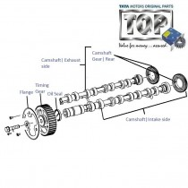 Camshaft| 2.2 VariCOR| Safari Storme