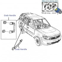 Grab Handle| Safari Storme