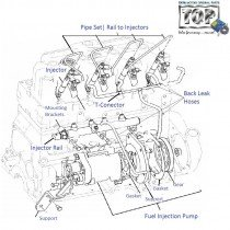 Fuel Injection| 3L| Safari