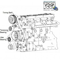Timing Belt Kit| 2.2 DiCOR| Safari