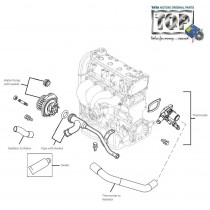 Water Pump & Thermostat| 1.4 Safire| Manza