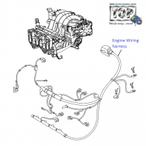 Engine Wiring Harness| 1.2 Safire| Vista Sedan Class