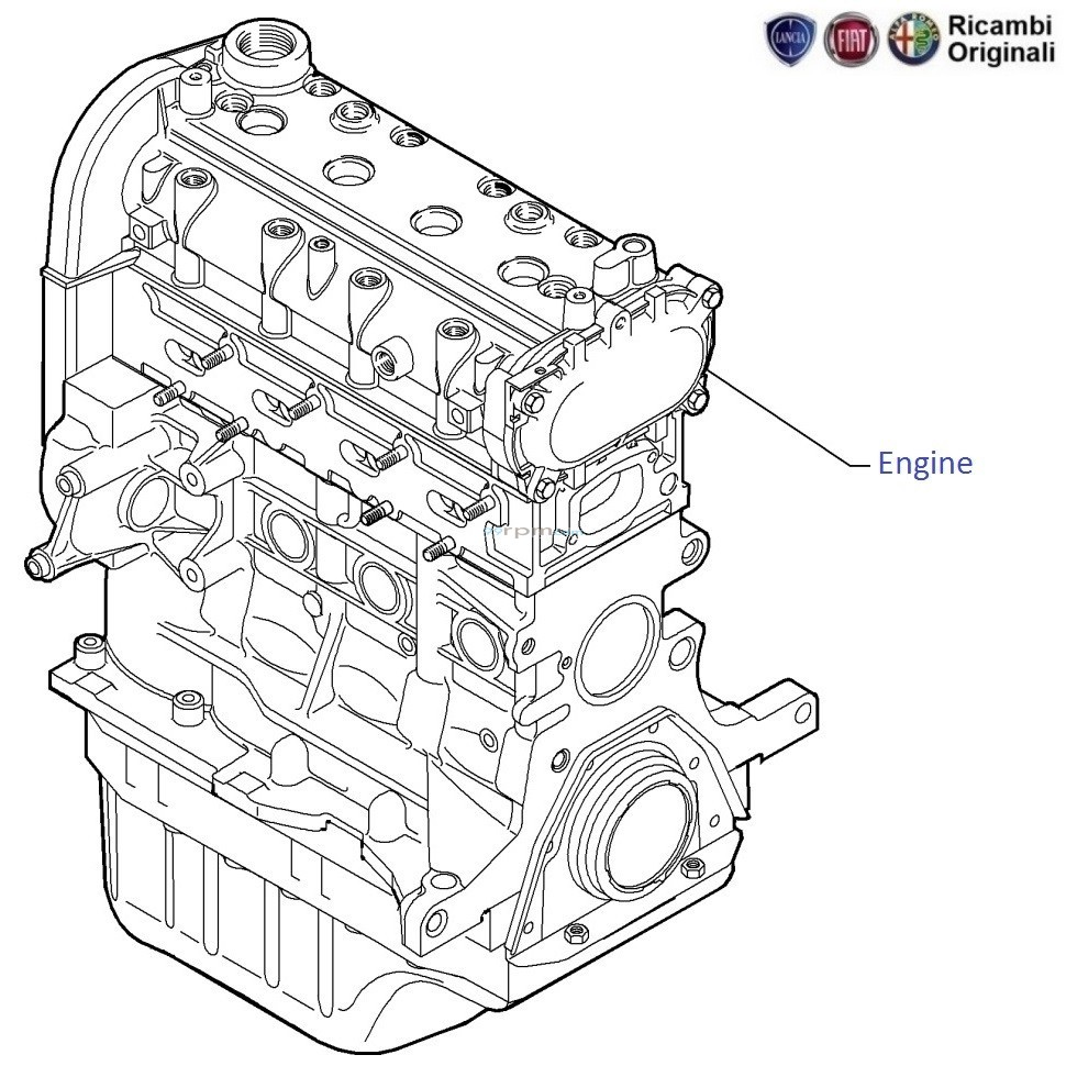 Fiat Engine Schematics Worksheet And Wiring Diagram Diagrams Linea 1 3 Mjd Diesel Complete Bare Rh 99rpm Com V8 Kohler Schematic