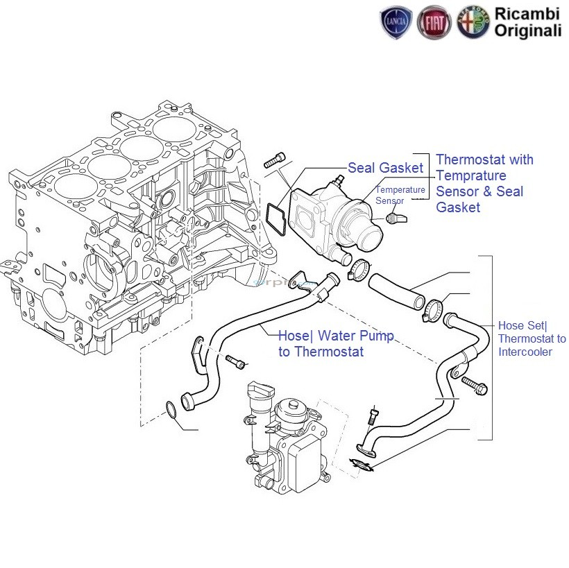 Fiat Fuel Pump Diagram : Fiat punto hose diagram auto parts catalog and