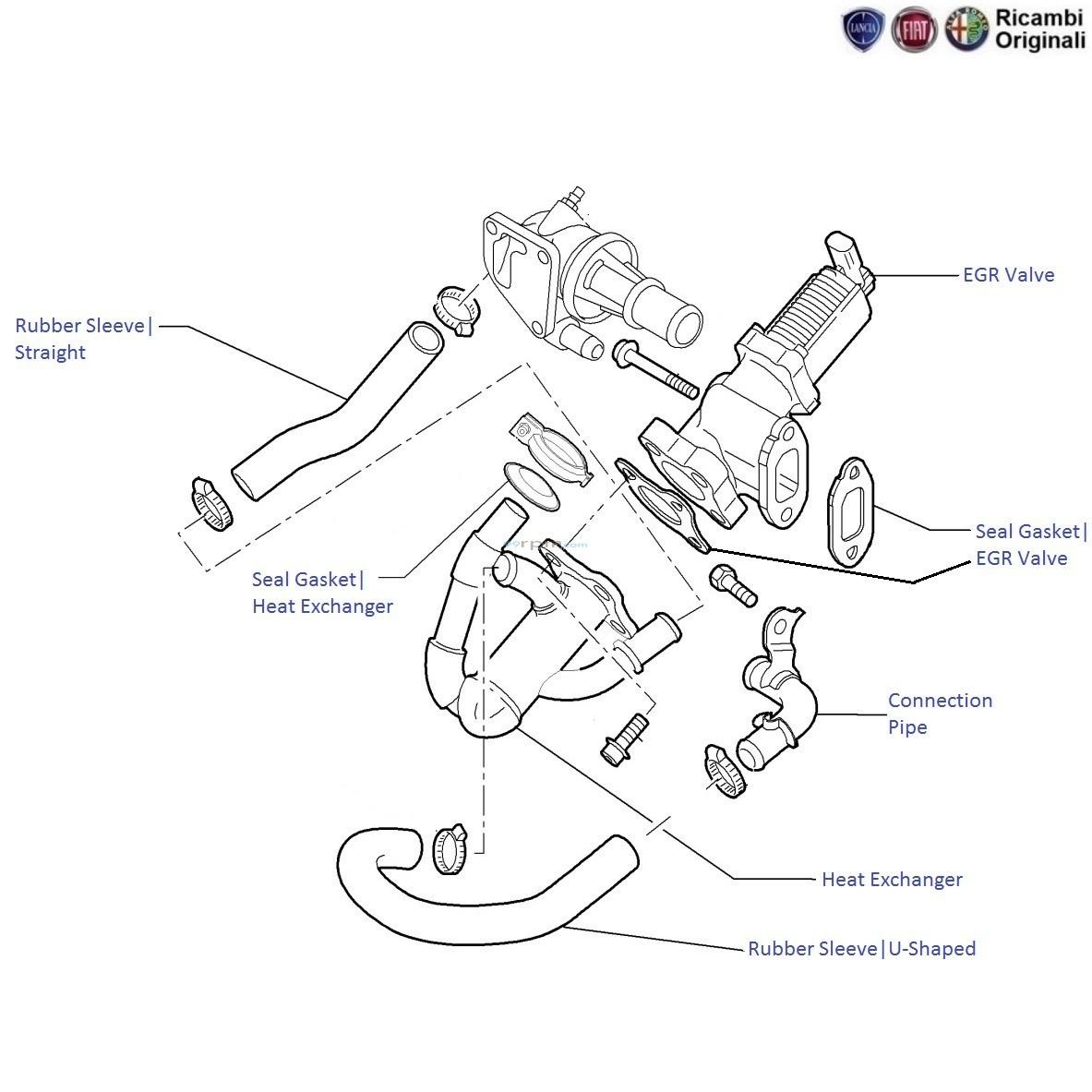 Fiat Linea 1 3 Mjd Diesel  Egr