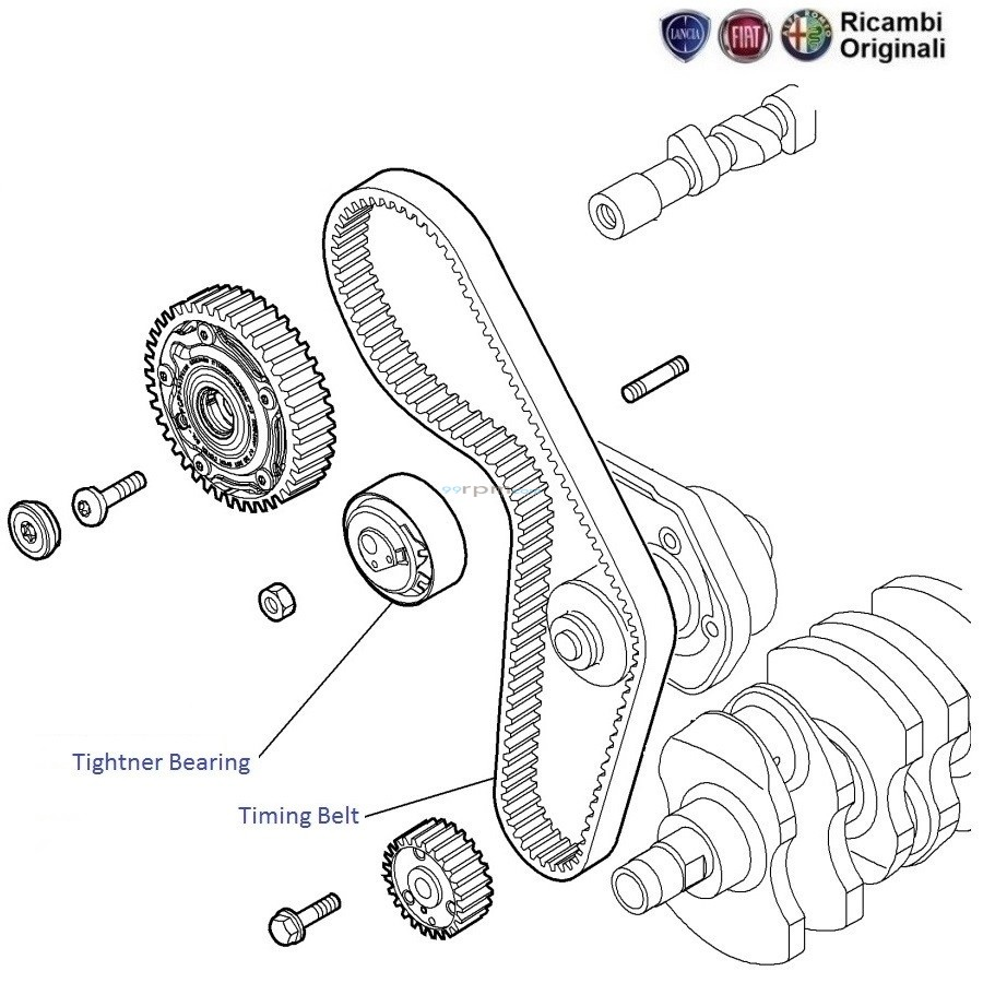 fiat punto 1 4 fire  timing belt and tightner bearing