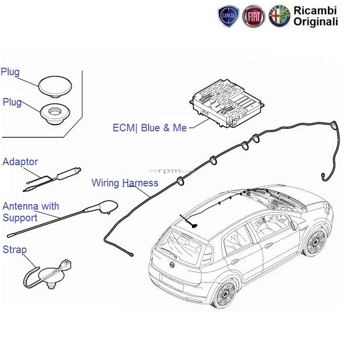 wiring_antenna_ecu_punto_1 fiat punto radio antenna, wiring, blue & me ecu ecm fiat punto airbag wiring diagram at n-0.co