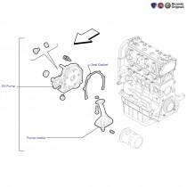Oil Pump| 1.4 FIRE| Punto