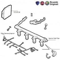 ECU & Injector Rail| 1.6| Palio| Petra| Adventure