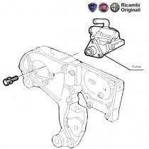 Power Steering Pump| 1.9D| Palio| Petra| Adventure