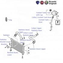 Fiat Linea 1.3 MJD: Radiator, Hoses and Cap