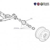 Wheel Hub & Bearing| Rear| Palio| Petra| Adventure
